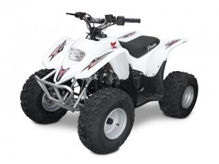 2f3f402759e74 Mini ATV 125ccm 6